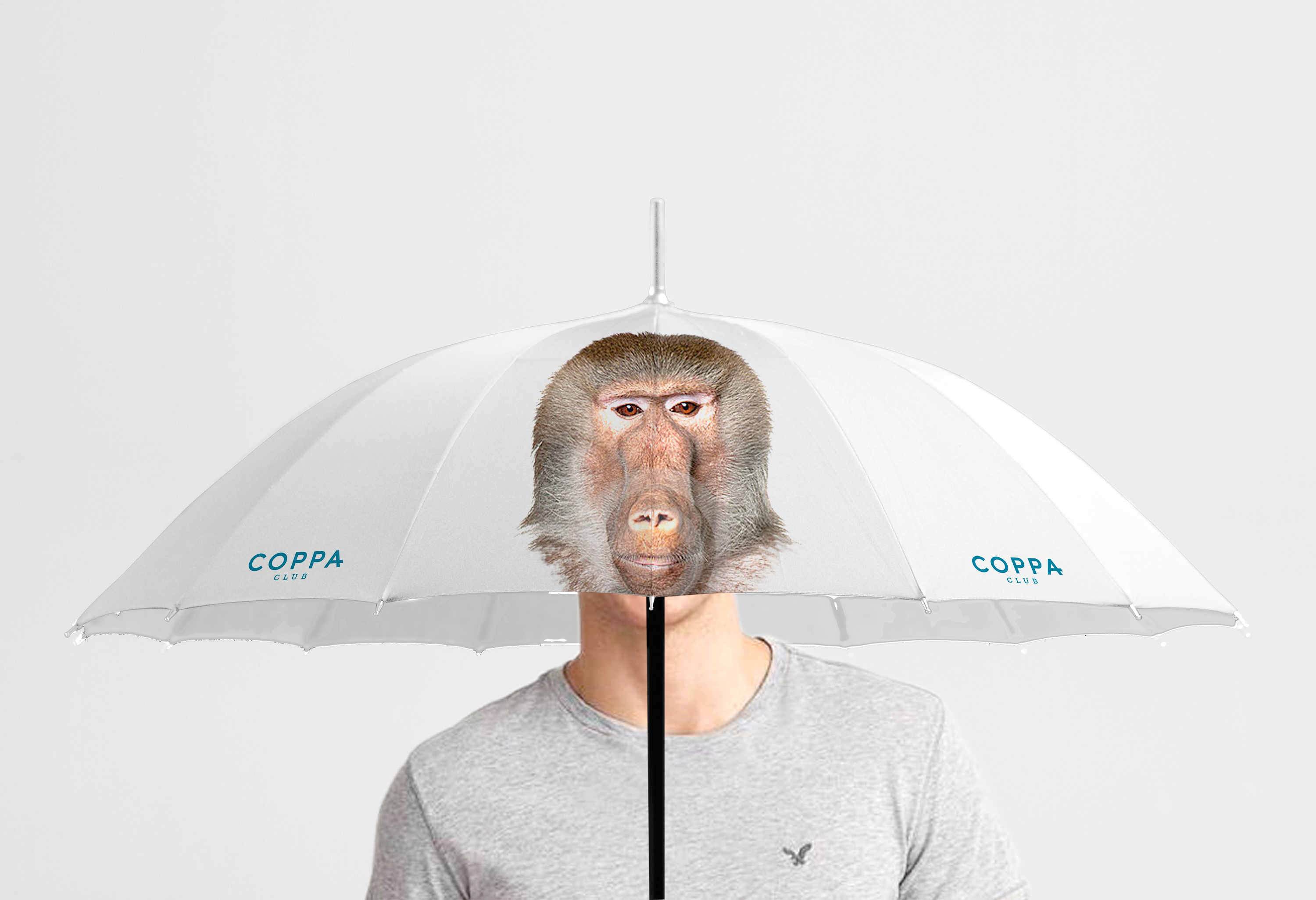 Brolly_Baboon